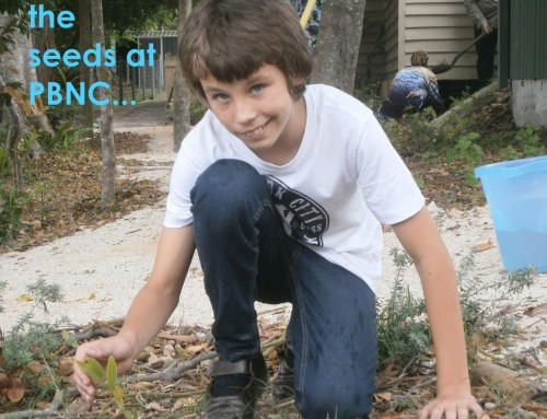 Planting the seeds at PBNC…